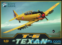"T-6 ""Texan"" trainer aircraft"