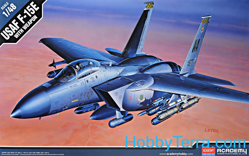 USAF F-15E Strike Eagle with weapon