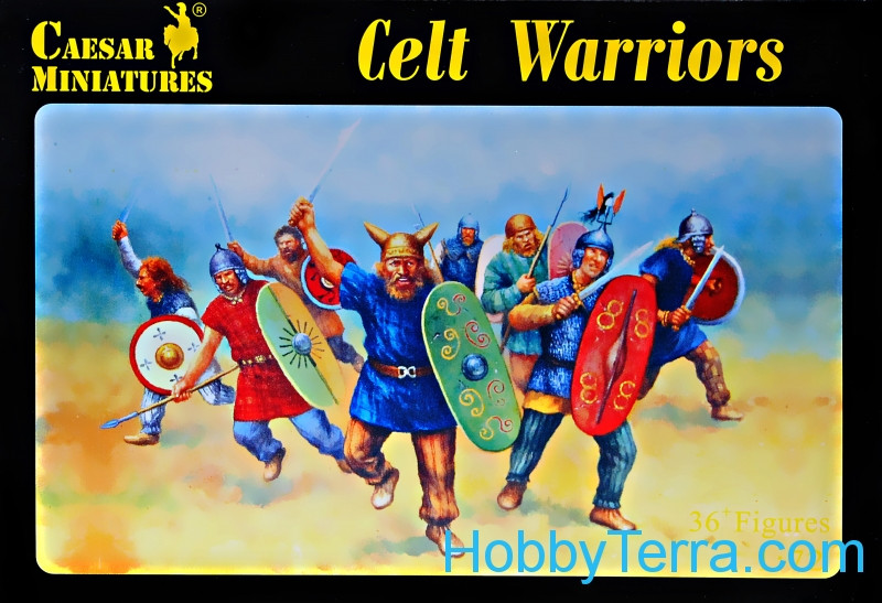 Celtic warriors