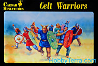 Celt Warriors