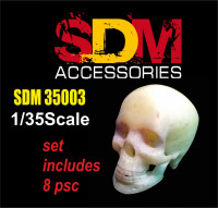 Accessories for diorama. Human skull