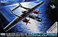WWII USAAF Northrop P-61B Last Shoot Down 1945 Limited