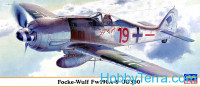 "Fw190A-8 ""JG300"" fighter"