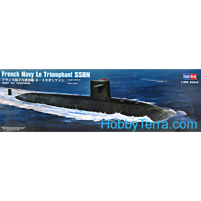 French Navy Le Triomphant SSBN