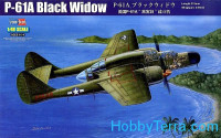 U.S. P-61A Black Widow fighter