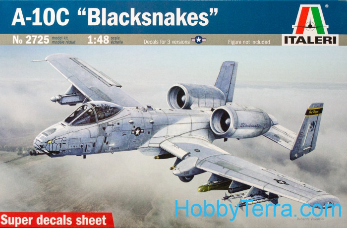 "A-10C ""Blacksnakes"" interceptor"
