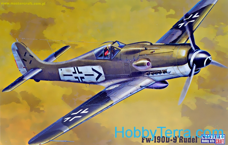 "FW-190 D-9 ""Rudel"" fighter"