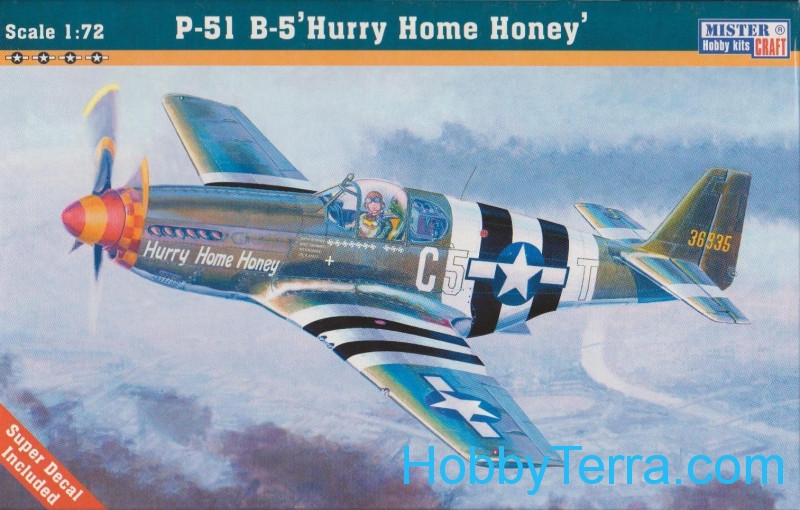 "USAF P-51B-5 ""Hurry Home Honey"" fighter"