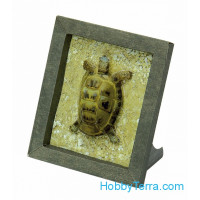 "Collectible frame ""Turtle"""