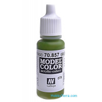 Model Color 17ml. 079-Golden-olive