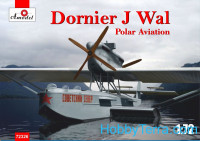Dornier J Wal, Polar aviation